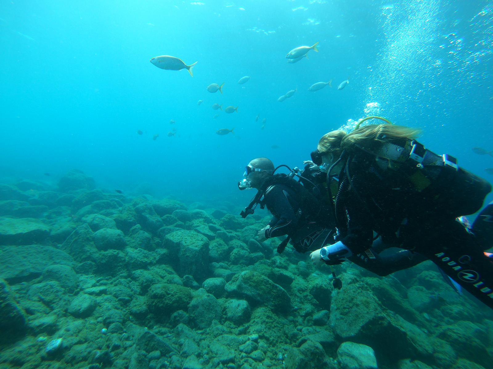 Shore VS. Boat Dives